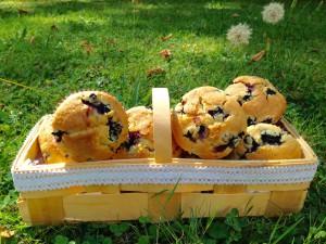 Die fertigen Blaubeer-Muffins