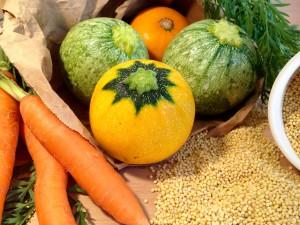Frisches Gemüse und Rondini-Kürbisse