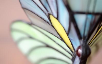 Leuchtende Kostbarkeiten im Tiffany-Stil